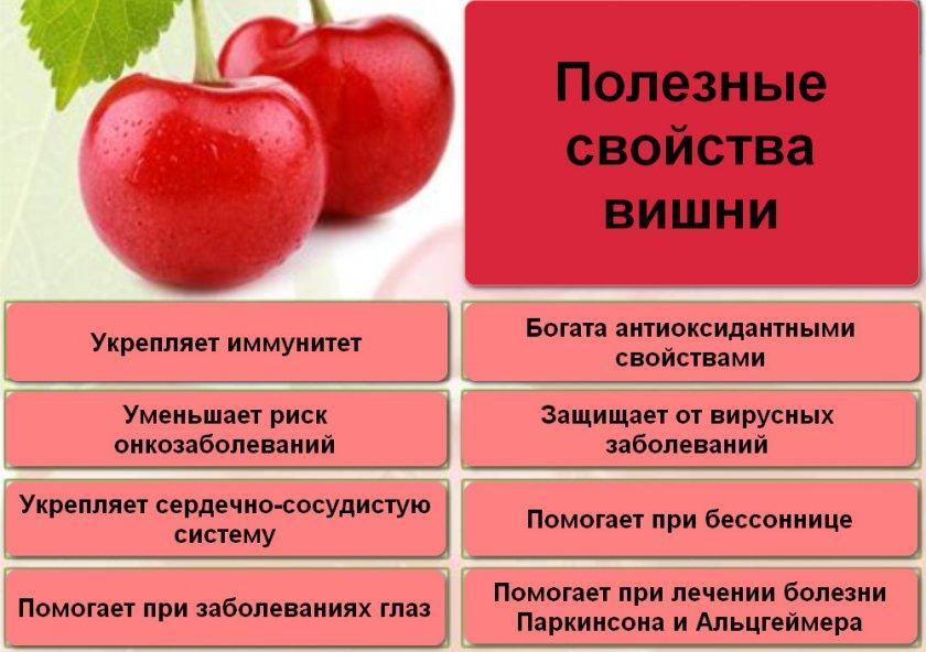 Черешня: польза и вред для здоровья и организма человека, правила употребления, противопоказания