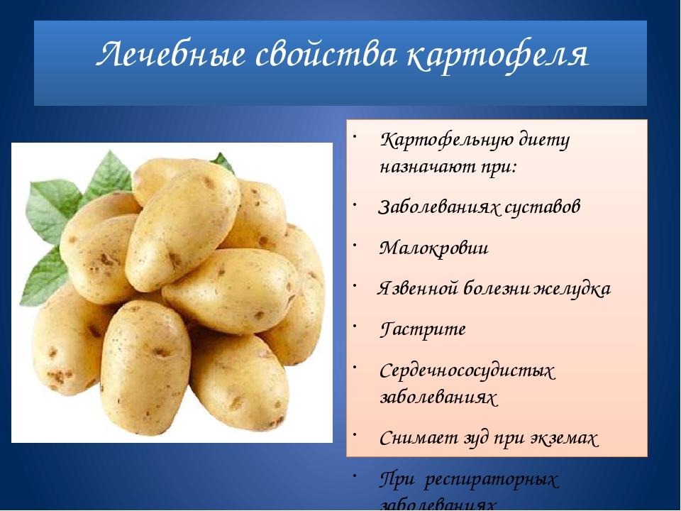Польза и вред картофеля для организма