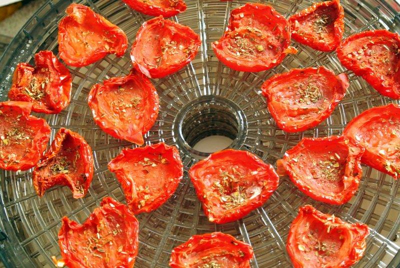 Как вялить помидоры в домашних условиях в духовке, электросушилке