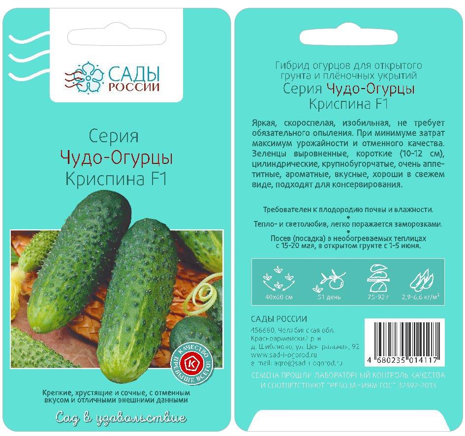 Огурец криспина f1: описание, фото, выращивание в открытом грунте