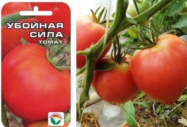 Описание томата Убойная сила и советы по выращиванию сорта на личном подворье