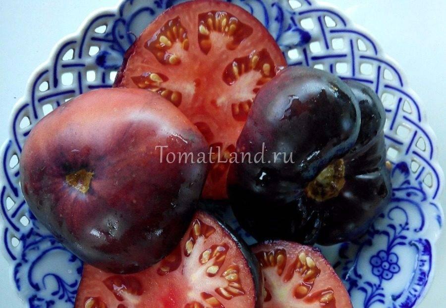 Описание фиолетового томата аметистовая драгоценность и агротехника выращивания