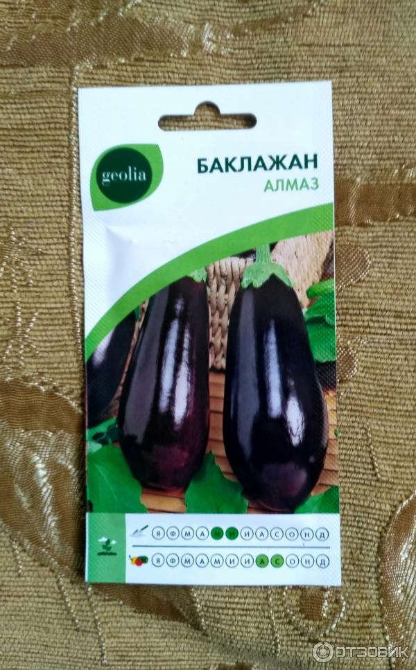 Баклажан алмаз: фото, характеристика сорта, описание процесса выращивания, включая посев семян на рассаду, дальнейший уход, а также рекомендации, когда сажать