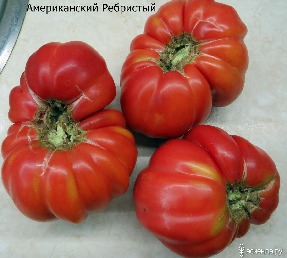 Томат «американский ребристый»: характеристика и описание сорта – все о томатах. выращивание томатов. сорта и рассада.