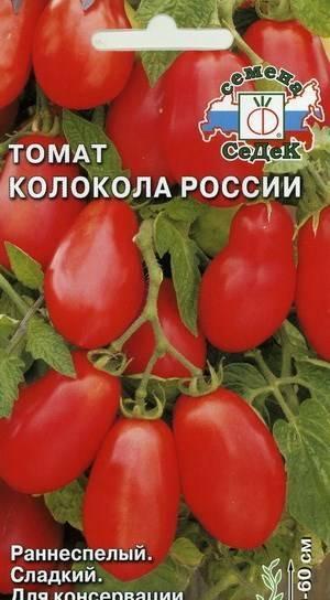 Томат колокола россии: описание сорта, характеристика, отзывы об урожайности, фото - все о помидорках