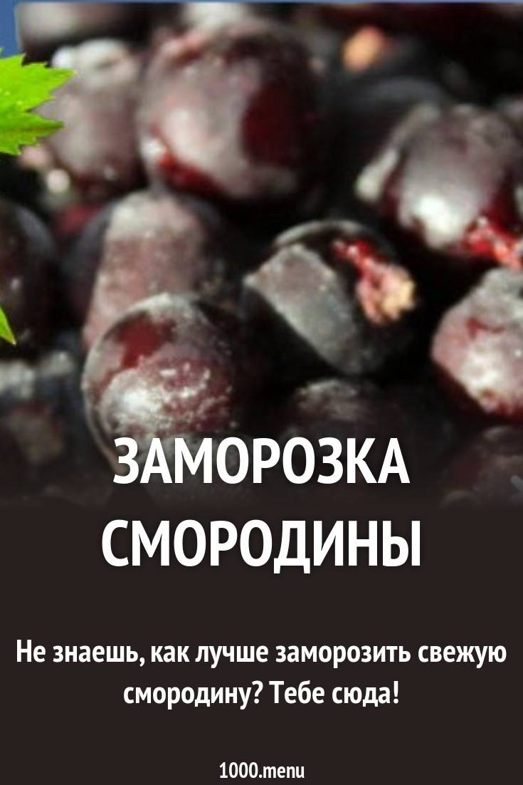 Как заморозить красную смородину на зиму - 9 пошаговых фото в рецепте