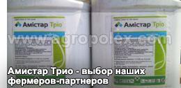Фунгицид амистар экстра: инструкция по применению, методика приготовления раствора