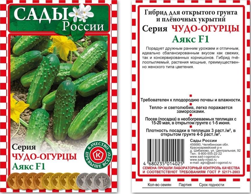 Урожайный огурец аякс f1:описание, особенности выращивания