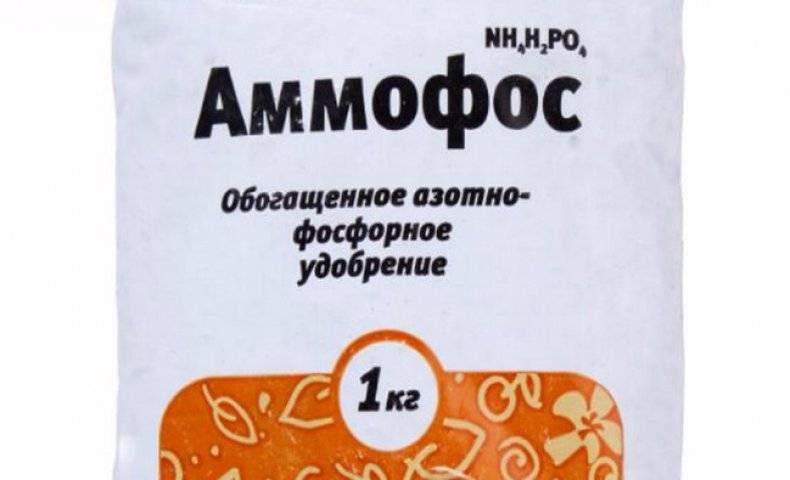 Удобрение аммофос : что это такое, состав, инструкция по применению - почва.нет