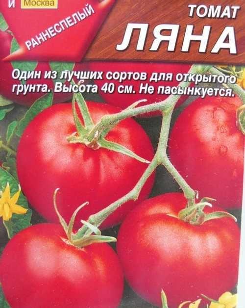 Описание сорта томата ленинградский скороспелый, его характеристика и урожайность – дачные дела