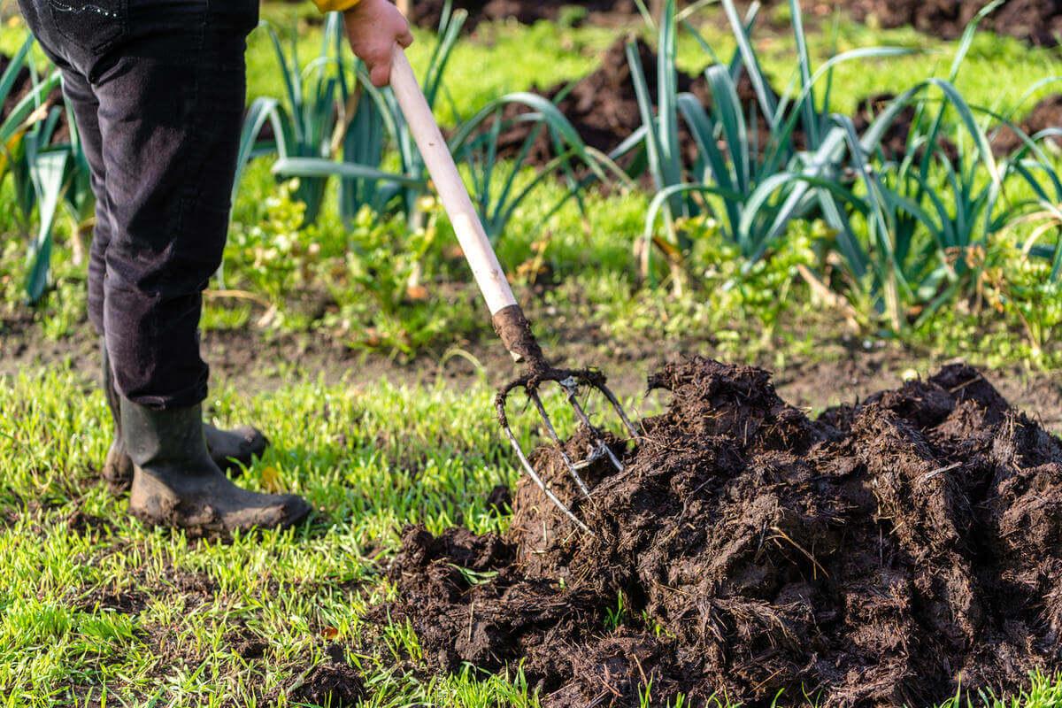 Удобрения земли весной