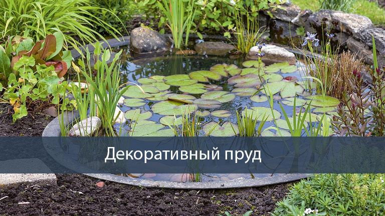 Как сделать пруд на даче своими руками: виды водоёмов и как их делать