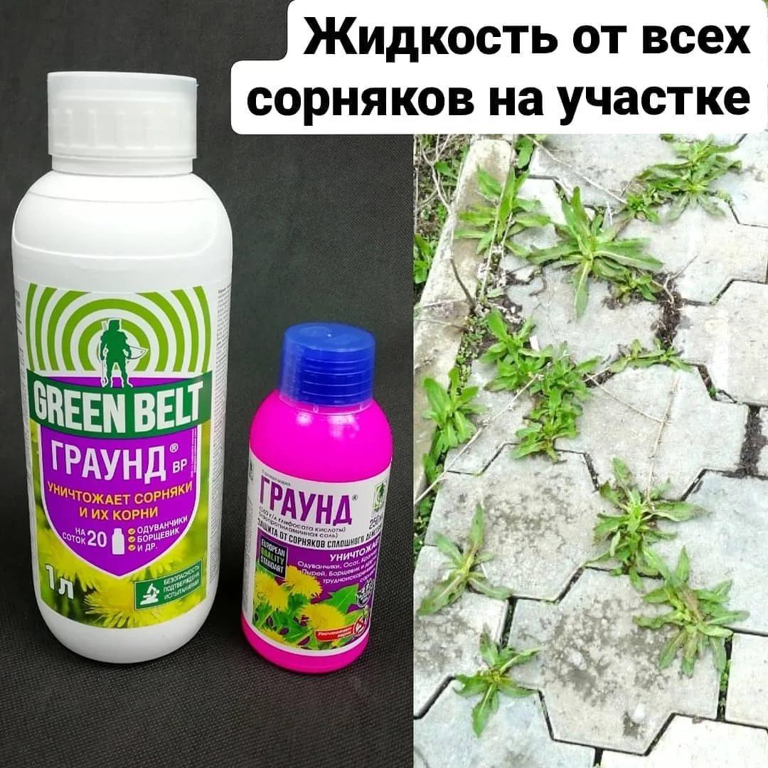 Разновидности гербицидов для борьбы с сорняками: название препаратов и описание