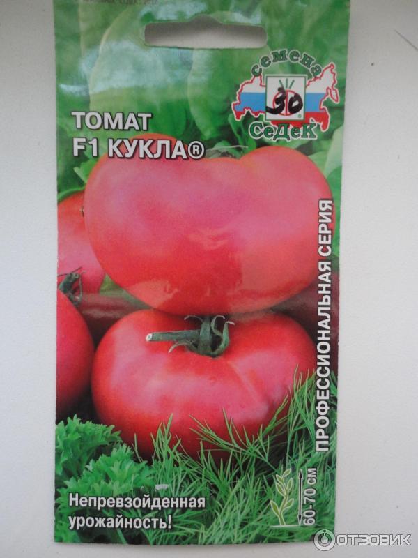 Правда ли, что томат «кукла» это лучший сорт для выращивания в теплице?