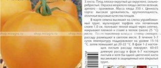 Характеристики томат «розовый слон», описание сорта, фото, отзывы – все о томатах. выращивание томатов. сорта и рассада.