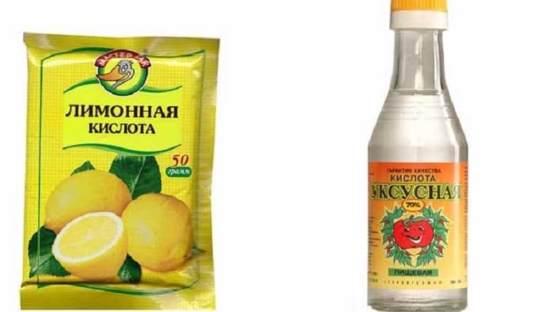 Лимонная кислота вместо уксуса: можно ли заменить при консервации и в какой пропорции