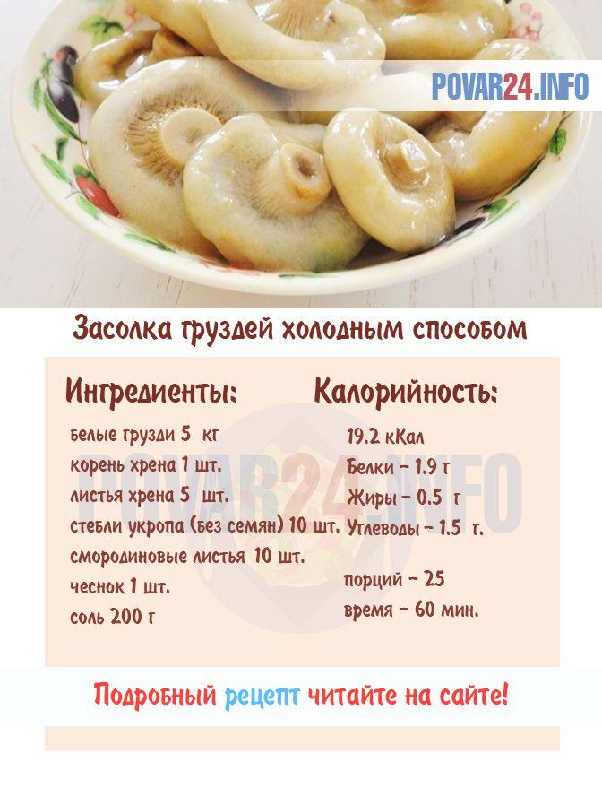 Грузди скрипуны: как солить горячим и холодным способом, рецепты на зиму с фото