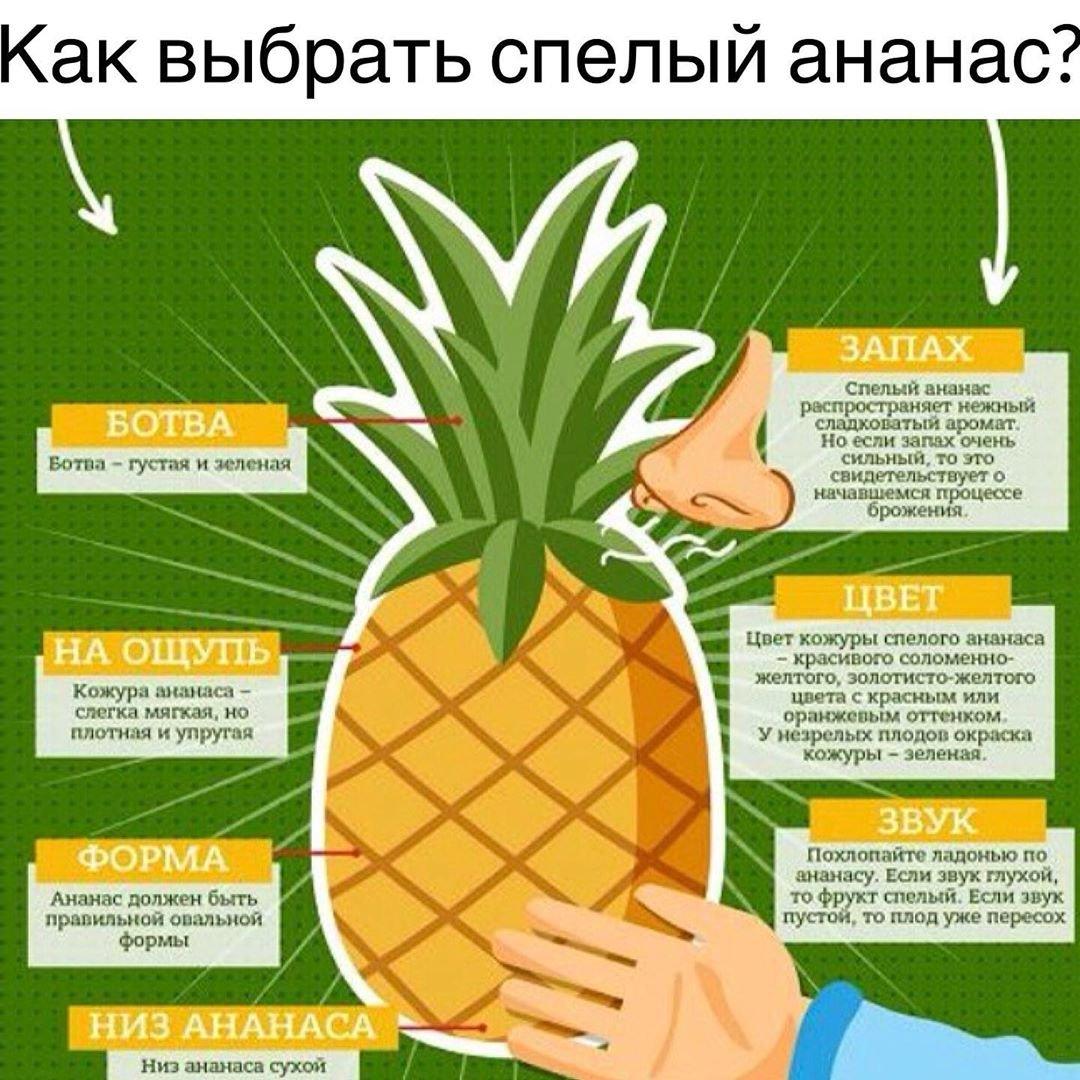 Ананас: польза и вред для здоровья, как выбрать спелый