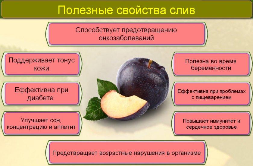Описание полезных и вредных свойств сливы для здоровья человека, противопоказания