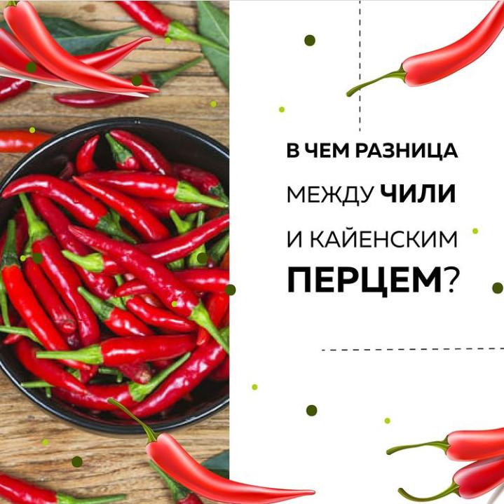 Самые популярные сорта острого перца для открытого грунта. выращивание и уход, характериститка плодов
