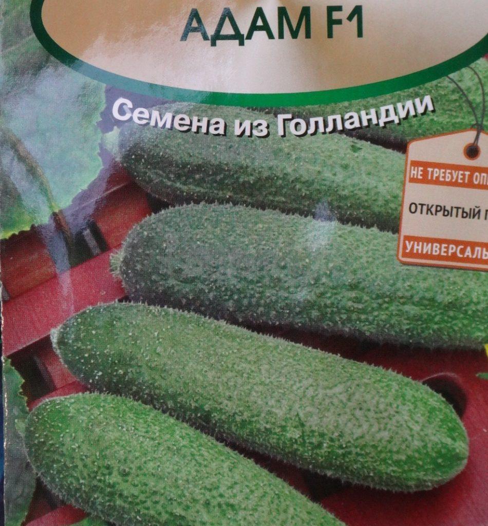 Огурец адам f1: описание, выращивание, уход, фото
