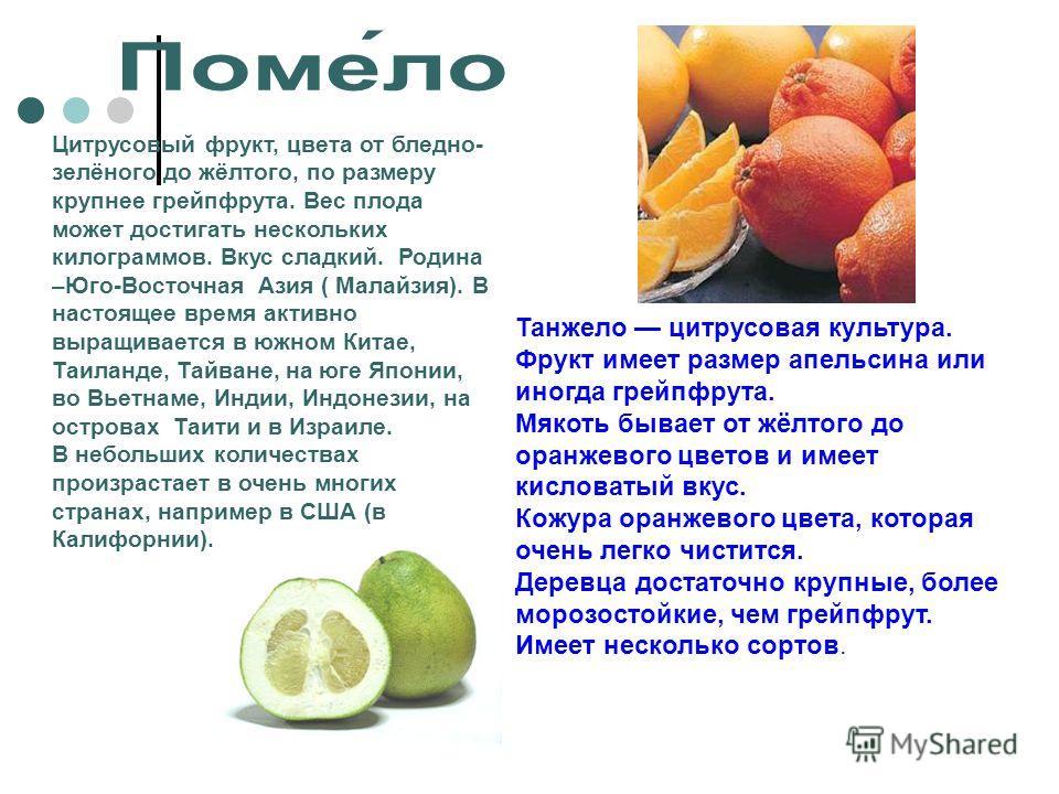 Изюм: польза и вред для организма