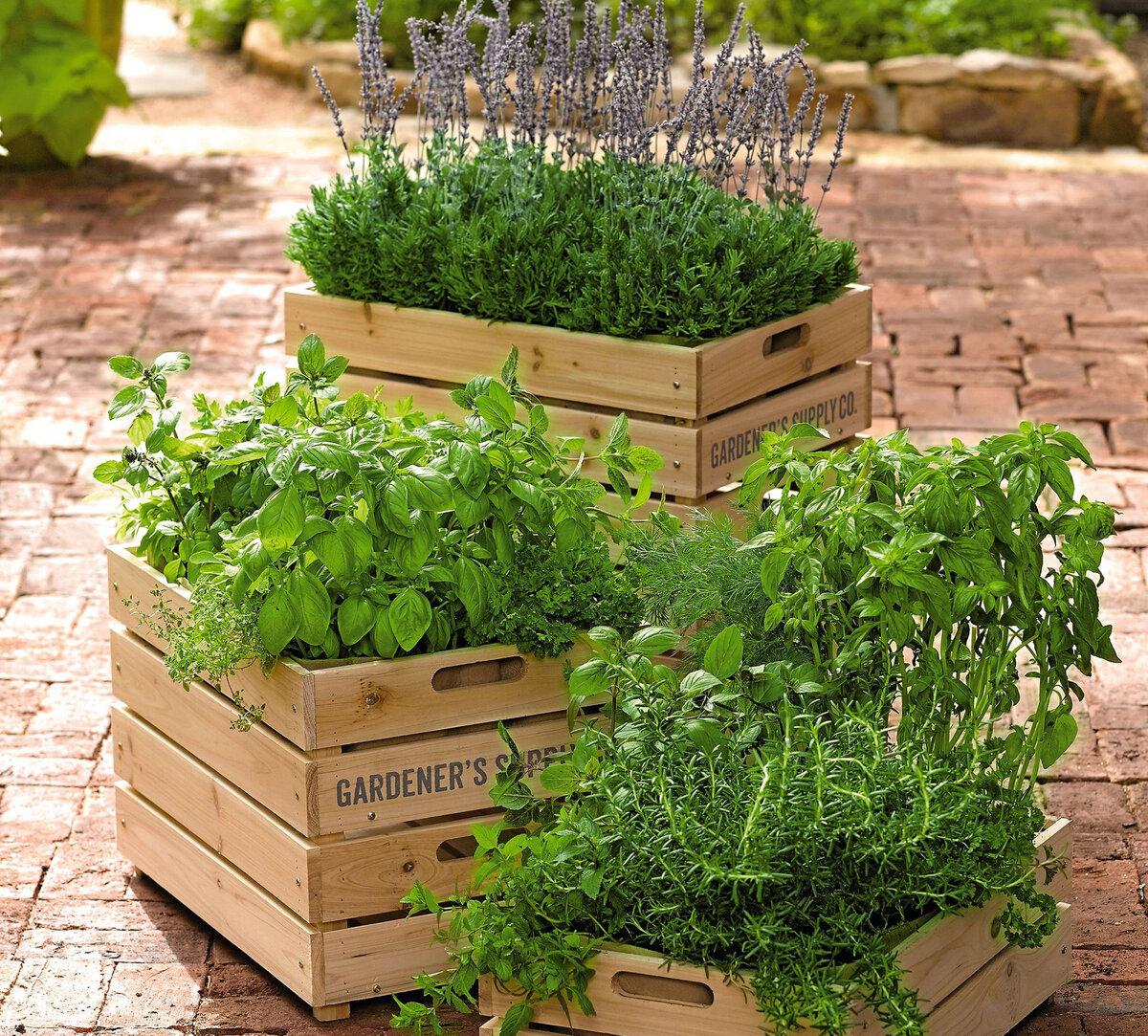 Ящик для компоста своими руками: варианты изготовления