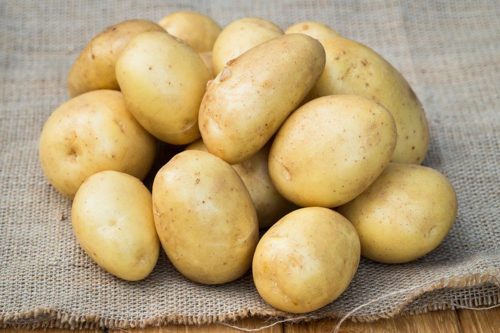 Картофель импала: отзывы, фото, описание и характеристика сорта