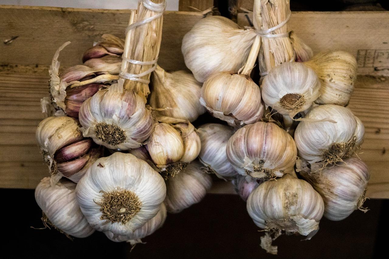 Топ-13 способов как лучше хранить чеснок в домашних условиях на зиму, чтобы не высох