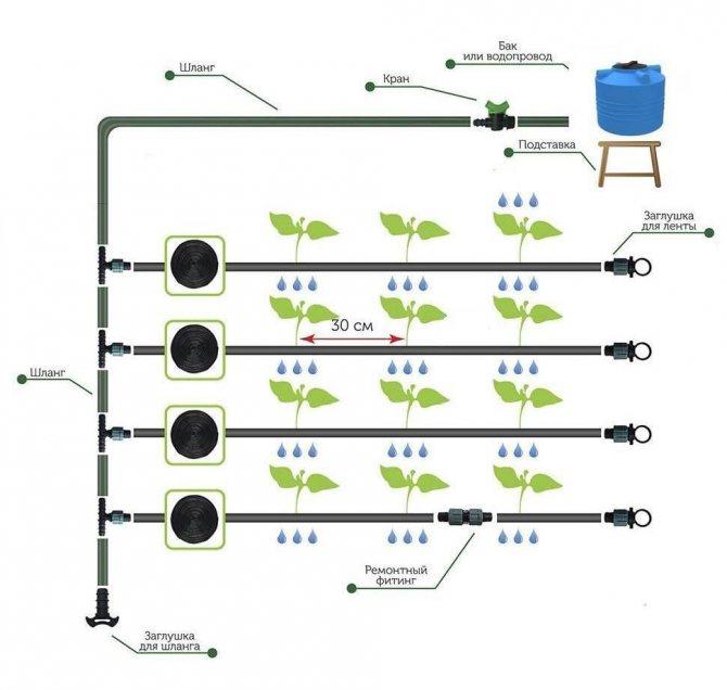 Система автоматического полива в теплице