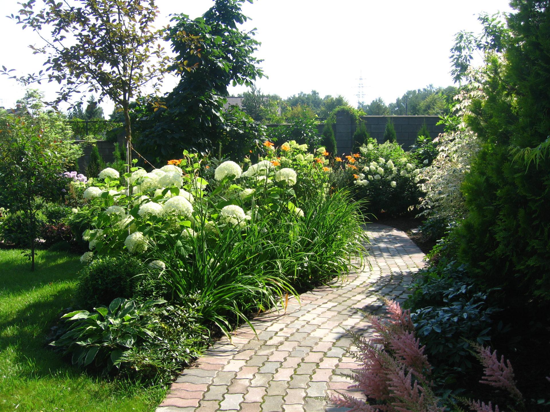 Простые правила создания постоянно цветущего сада