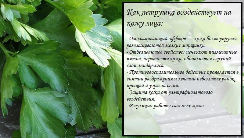 Удаление пигментных пятен | компетентно о здоровье на ilive