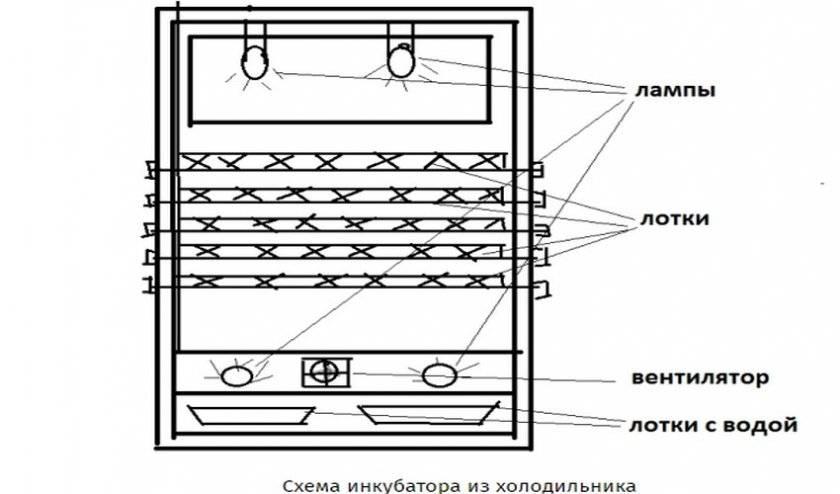 Как сделать инкубатор с автоматическим переворотом своими руками?
