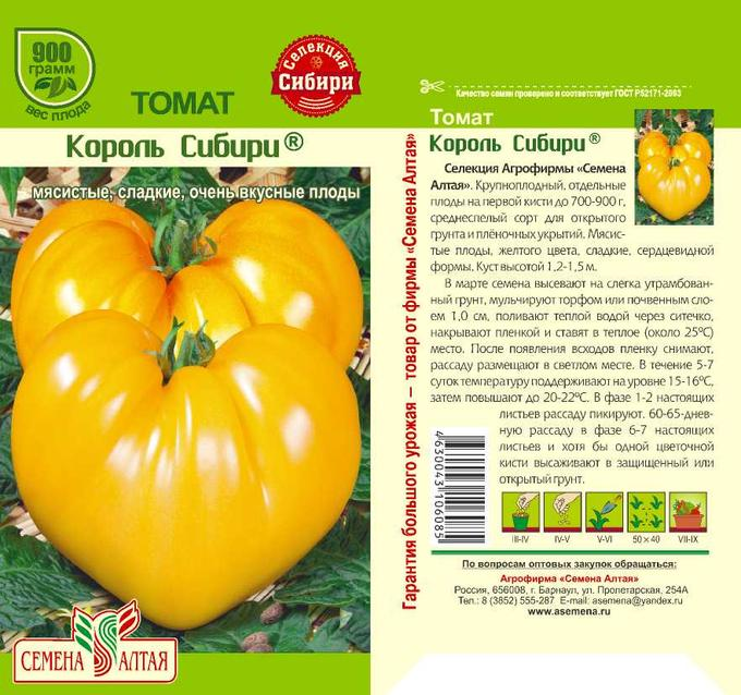 Толстушка: описание и особенности выращивания томата