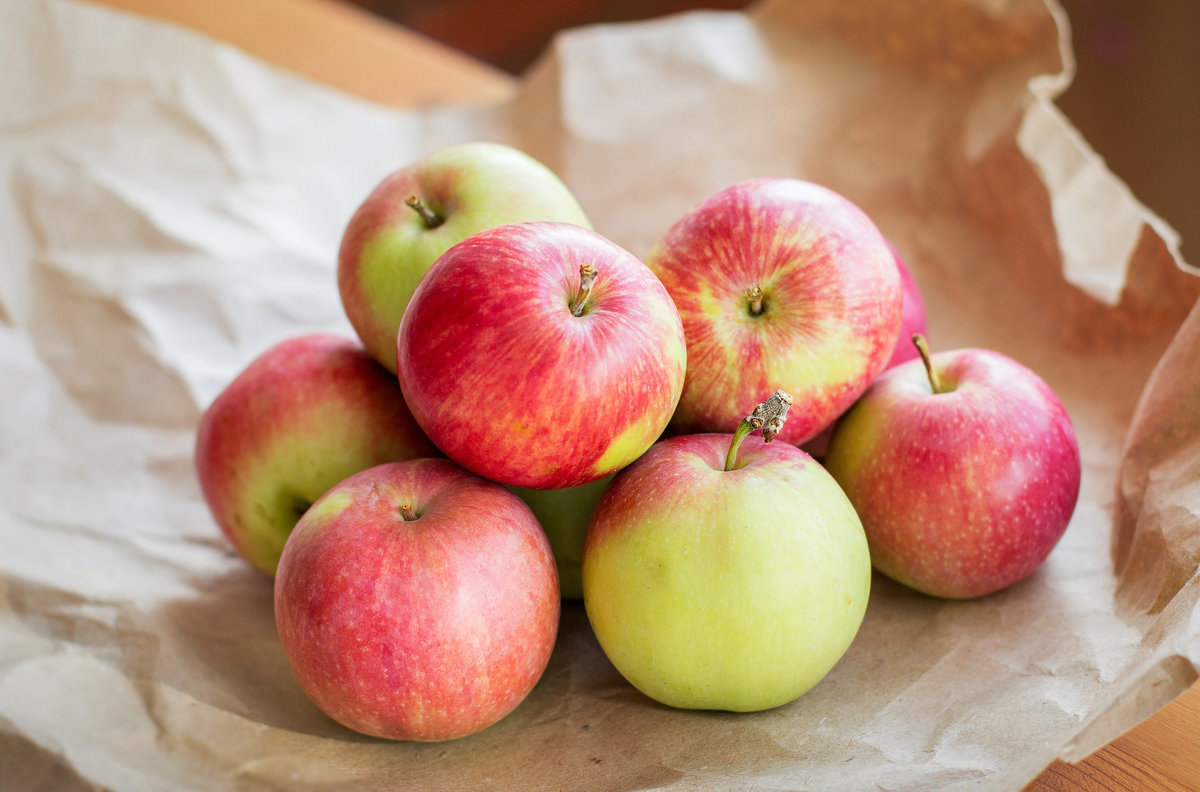 Яблоня елена: характеристики и особенности сорта