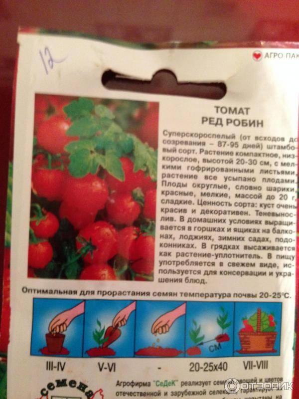 Описание томата Ред Робин и характеристика карликового сорта