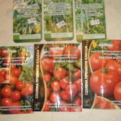 Описание сорта томата Марьина роща, особенности выращивания и ухода