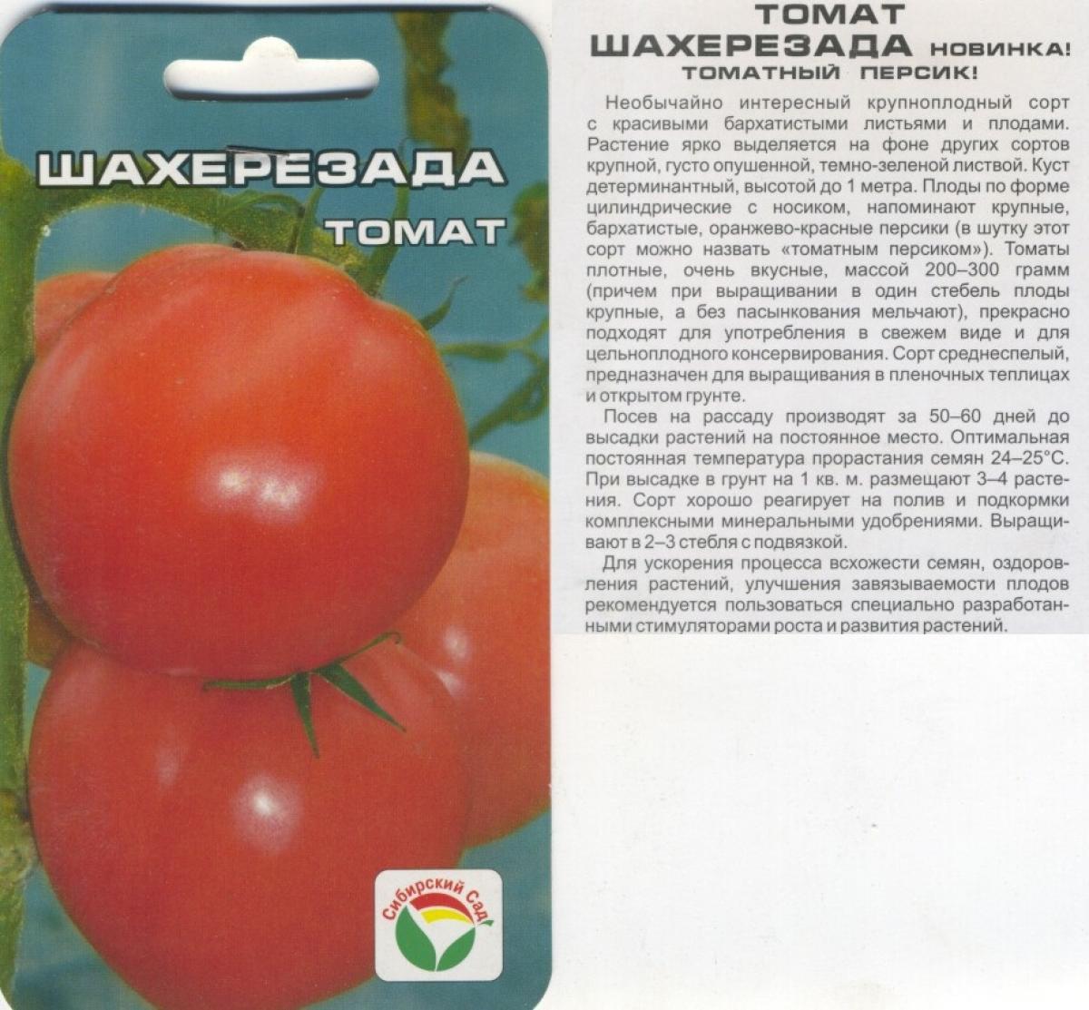 Выбираем лучшие сорта помидоров для огорода по фото и описанию