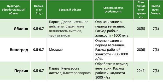 Фунгицид титан: инструкция по применению, механизм действия, нормы расхода
