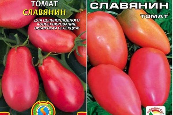 Томат славянский шедевр характеристика и описание сорта отзывы садоводов с фото