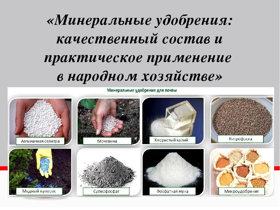Все о минеральных удобрениях