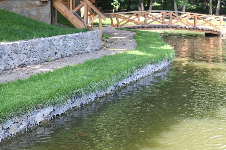 Особенности ухода за водоёмом: как очистить озеро