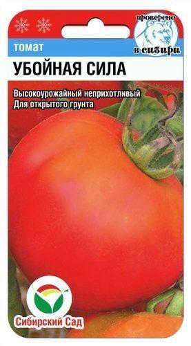 Помидор, который можно выращивать на балконе — сорт томата «титан»: фото и общее описание