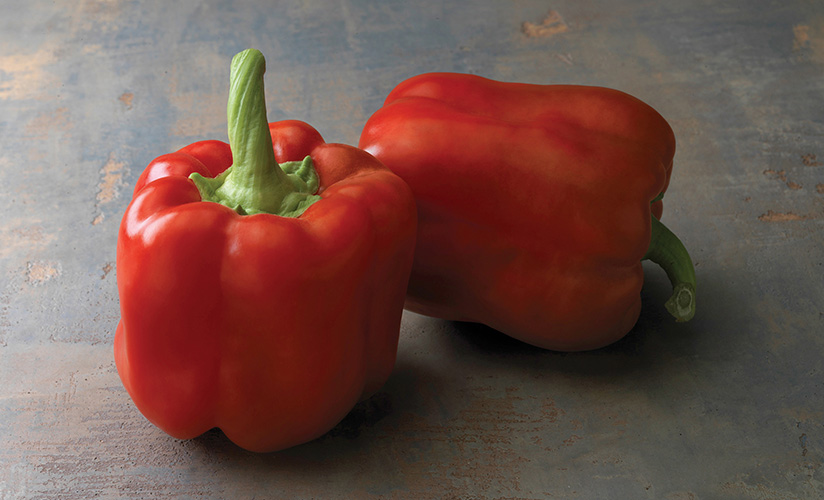 Перец оранжевый бык: описание сорта, фото, отзывы, урожайность