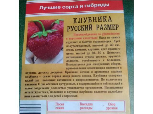 Клубника гигантелла - правила выращивания, описание сорта и особенности посадки