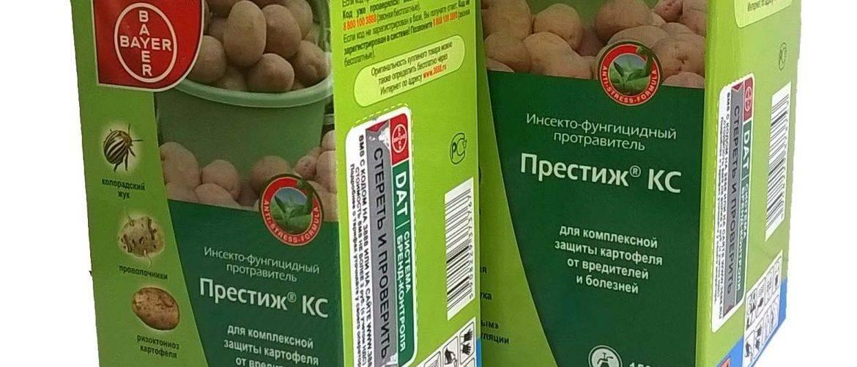 Обработка картофеля перед посадкой – назначение и методы