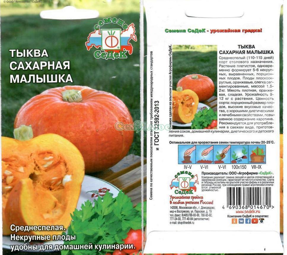 Тыква «конфетка»: описание и характеристики, техника выращивания и ухода