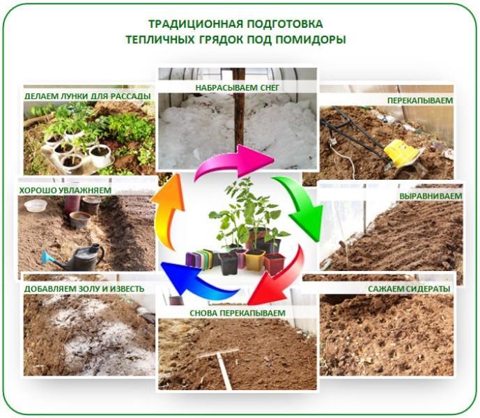 Подготовка почвы в теплице под помидоры весной: чем обработать перед посадкой