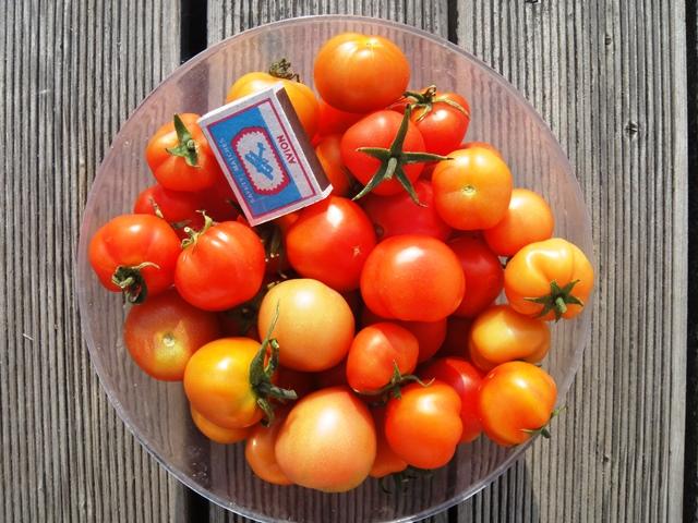 Секреты заготовок: сорта для засолки и рецепты маринованных томатов