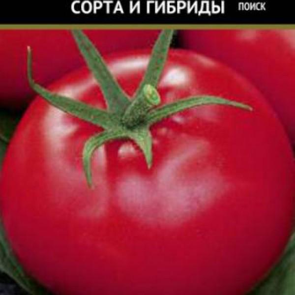 Томат афродита f1: отзывы фермеров, описание сорта помидоров, фото грядок и полученного урожая